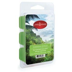 """2.5 oz Wax Melt Bundle """"Hawaiian Jungle"""""""